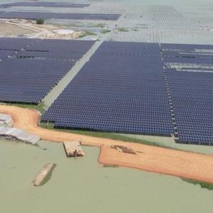 Ai đang dẫn đầu trong mảng năng lượng tái tạo ở Việt Nam? (P.1)